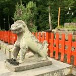 Tsurugaoka Hachiman-gu Komainu