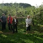 Nenoshiroishi Apple Orchard