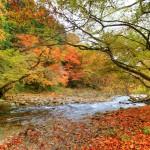 Nikkawa River